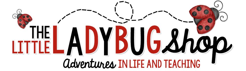 The Little Ladybug Shop
