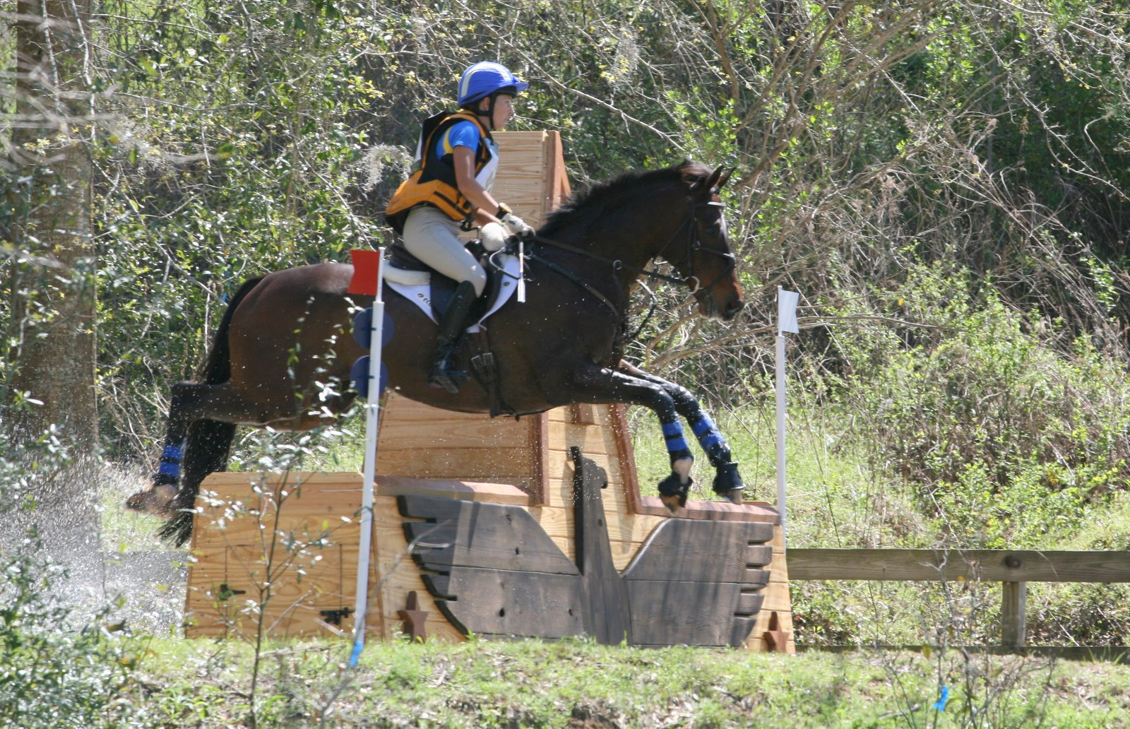 Horses jumping cross country - photo#20