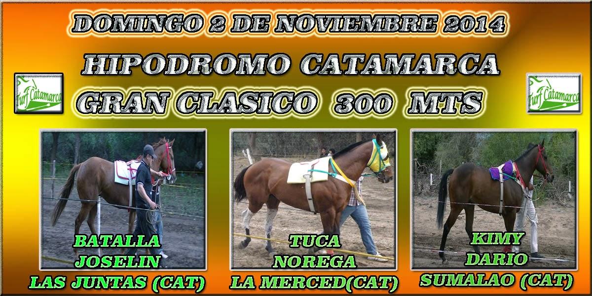 GRAN CLASICO 300--MTS