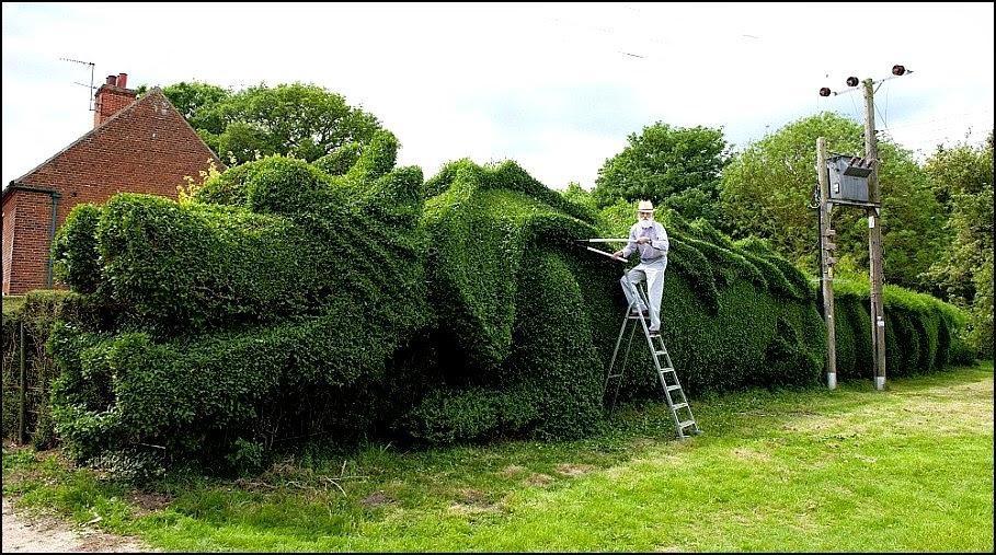 Naga Raksasa Muncul Di England