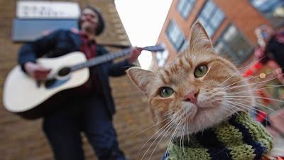 O cantor James Bowen e o seu gato Bob nas ruas de Londres