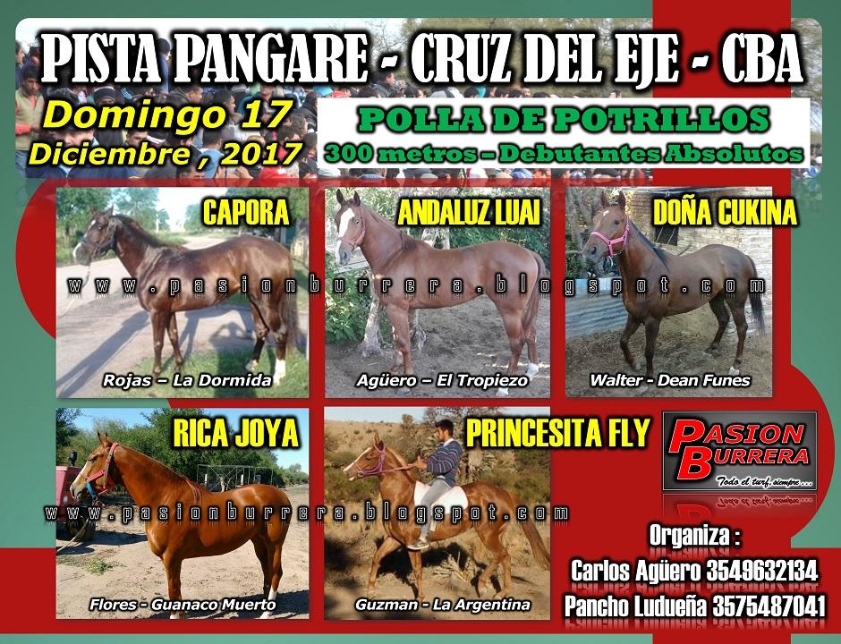 PANGARE 17 - POLLA
