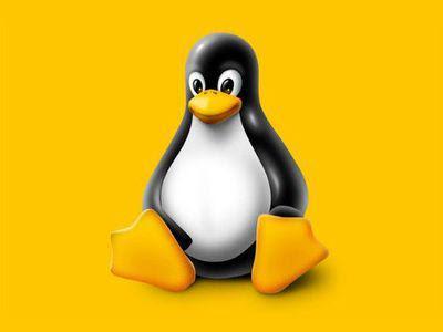 """O Linux possui centenas de distribuições, mas as melhores para iniciantes são aquelas mais simples e com recursos que """"lembram"""" o Windows"""