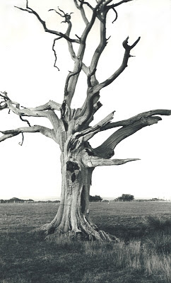 Dead Tree, Romney Marsh. 1930-34. (My Secret Atheist Blog)