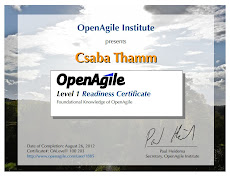 OpenAgile Level 1 Certificate
