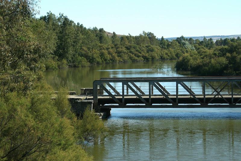 Puente de hierro sobre el Guadalete (Villamartín)