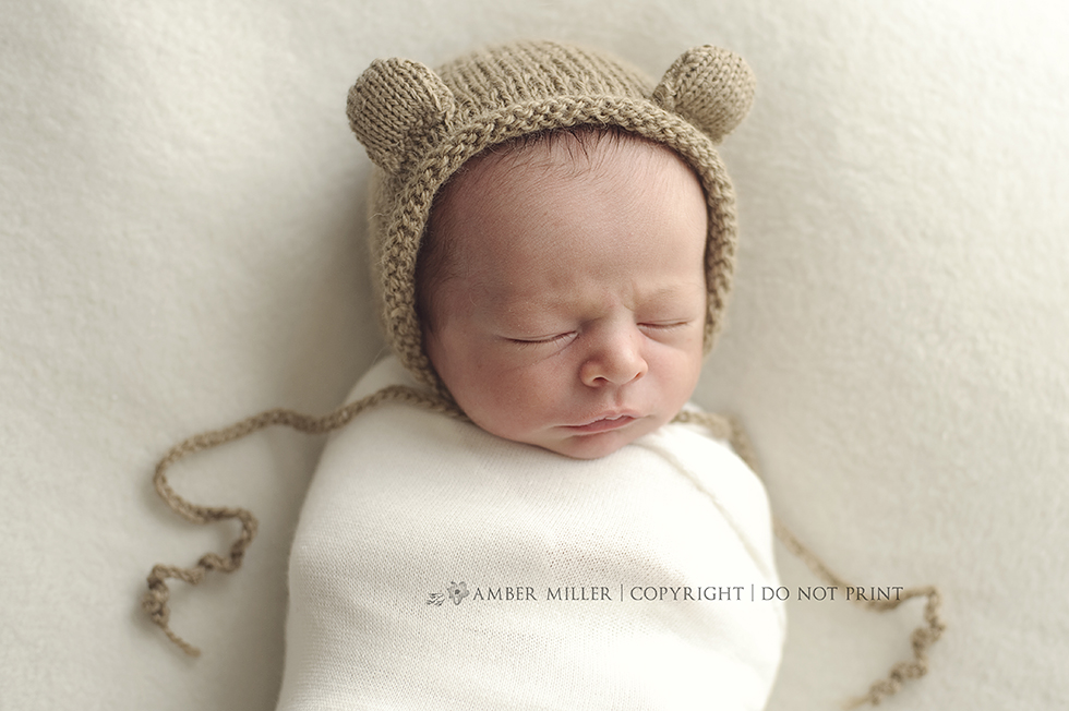 salt lake city utah newborn photographer