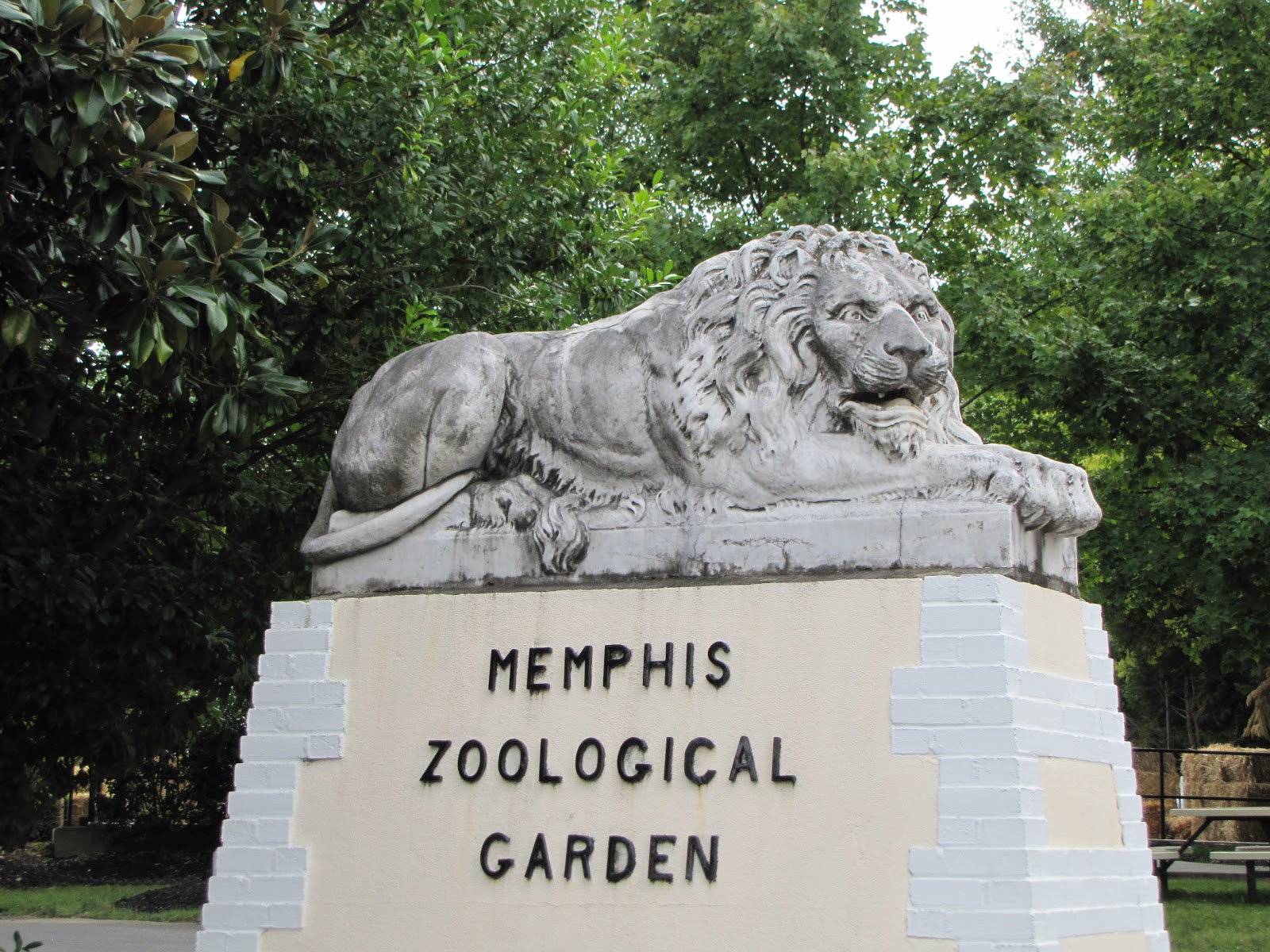 memphis zoo coloring pages - photo#14