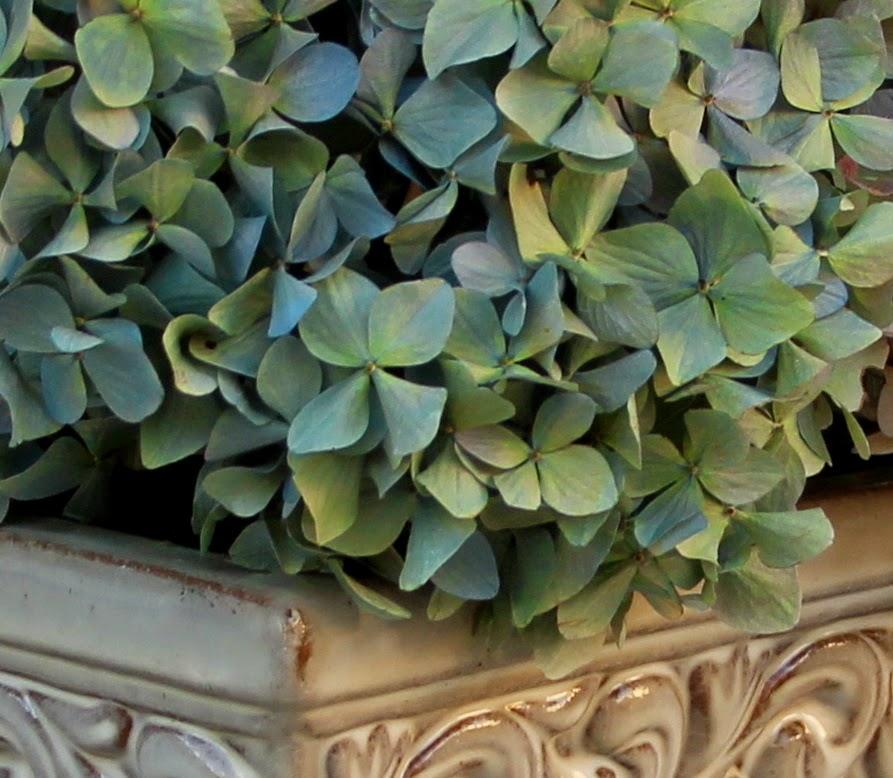 Dried Hydrangea Arrangements: Fall Arrangements That Last For Years