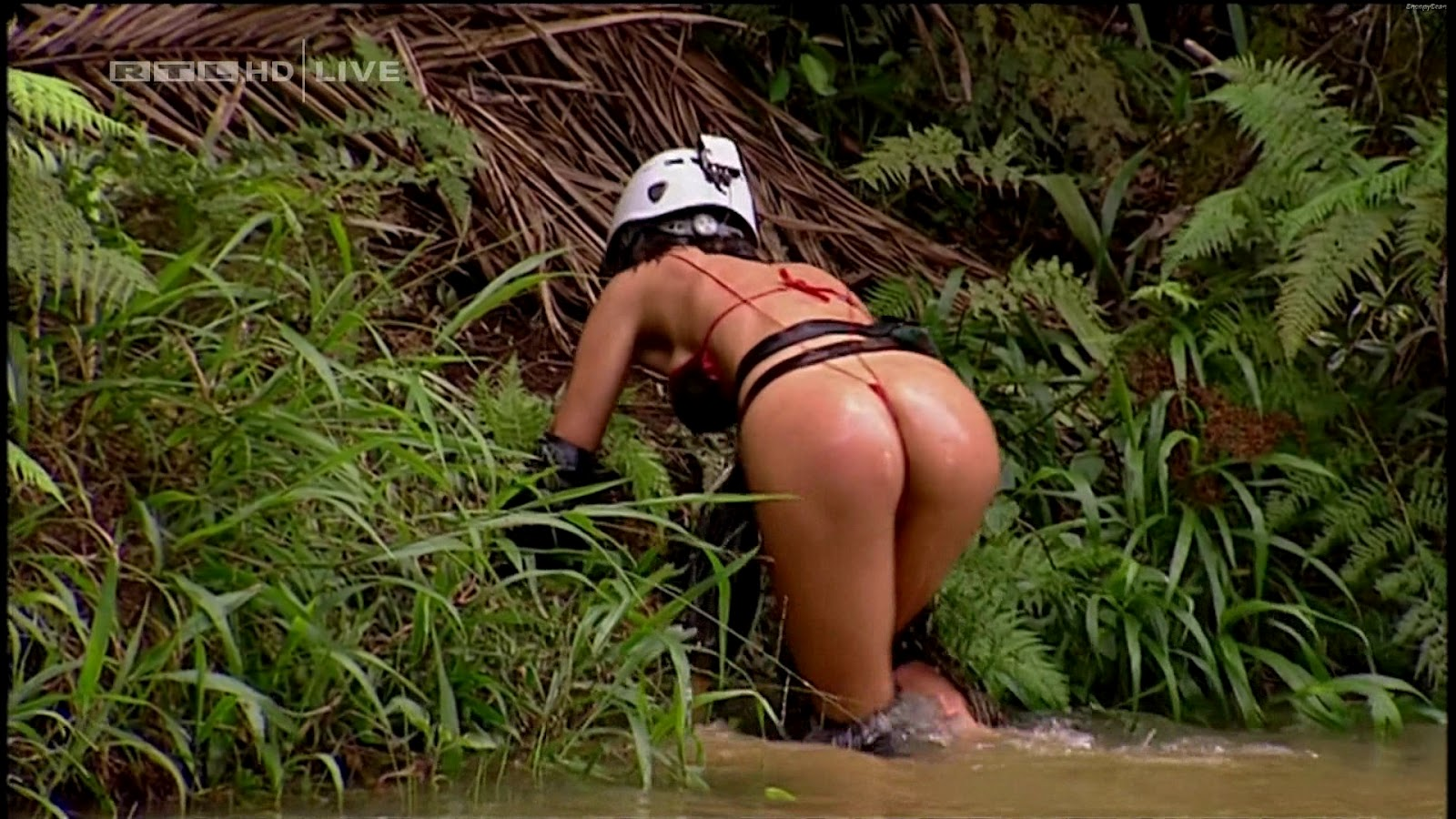 ass worsh michaela schäfer videos