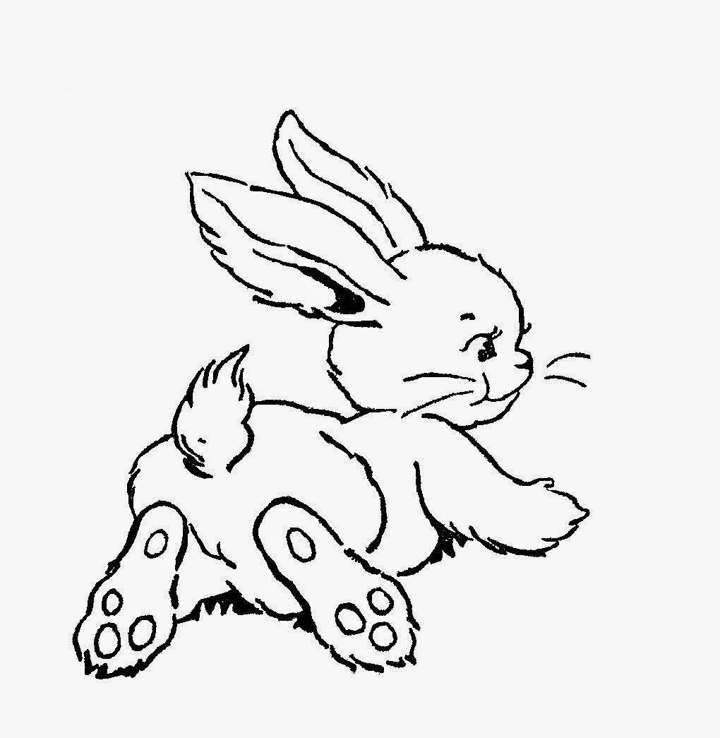 http://4.bp.blogspot.com/-gf-Jx_EUpv4/U0sc3PHMg4I/AAAAAAAATjM/KP4maHu3BUg/s1600/pixie_playmates_rabbit_2.jpg