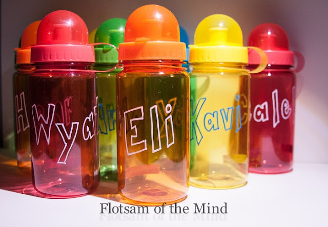 Water Bottle Party Favors - Flotsam of the Mind