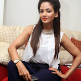 Parul Yadav Photos at South Scope Calendar 2014 Launch Photos 252872%2529