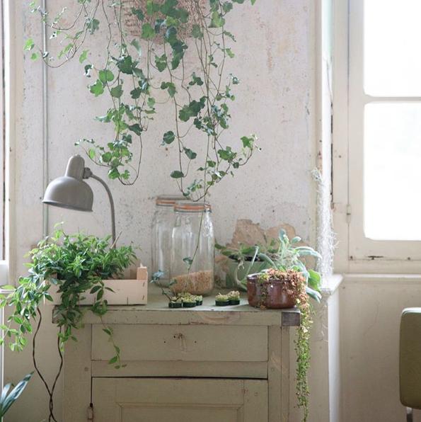 mes comptes pr f r s sur instagram 2. Black Bedroom Furniture Sets. Home Design Ideas