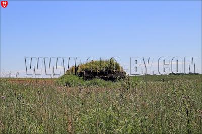 Второй немецкий ДОТ у деревни Дубово под Барановичами