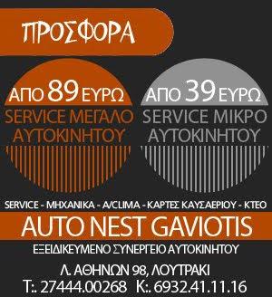 Auto Nest Gaviotis