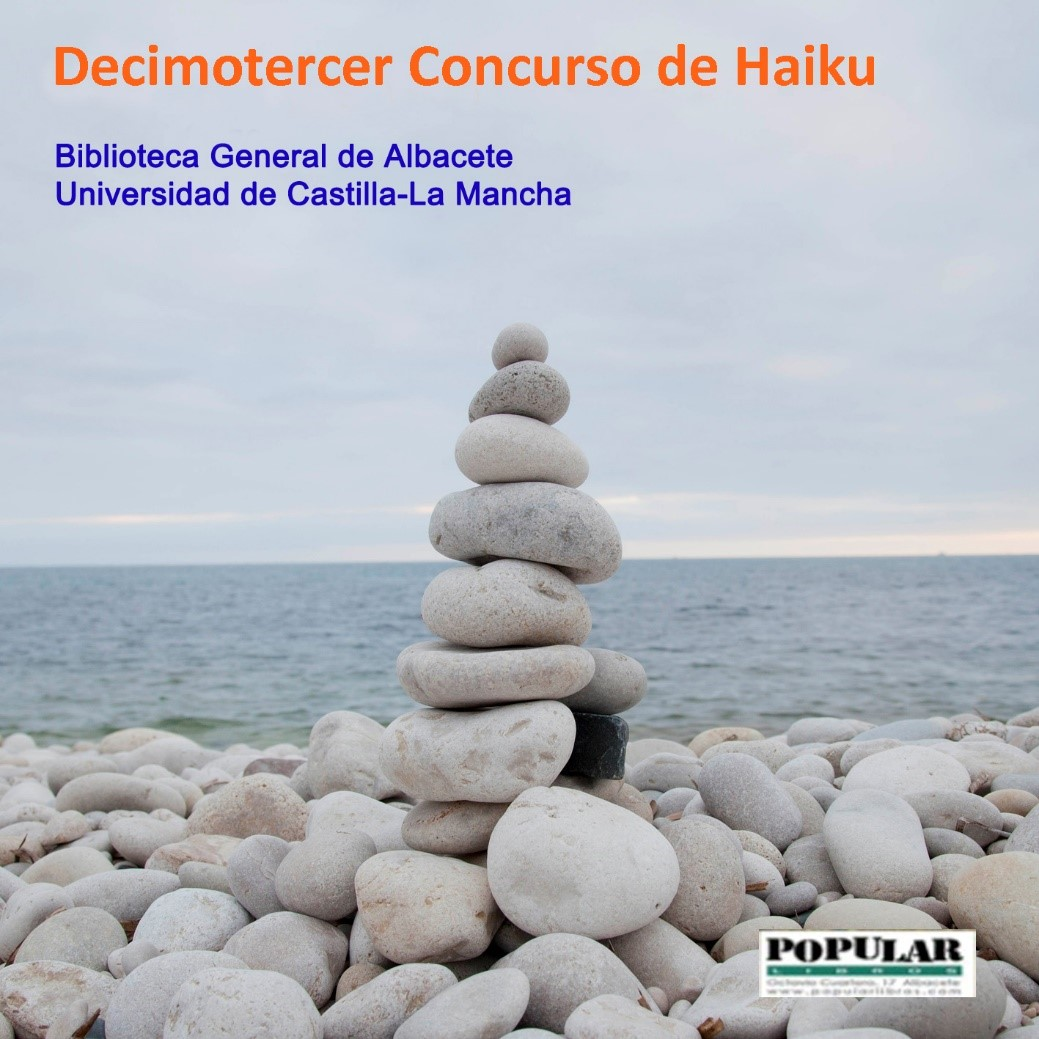 Decimotercer Concurso de Haiku