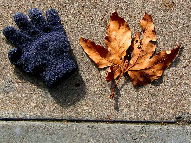 left and right, glove and leaf