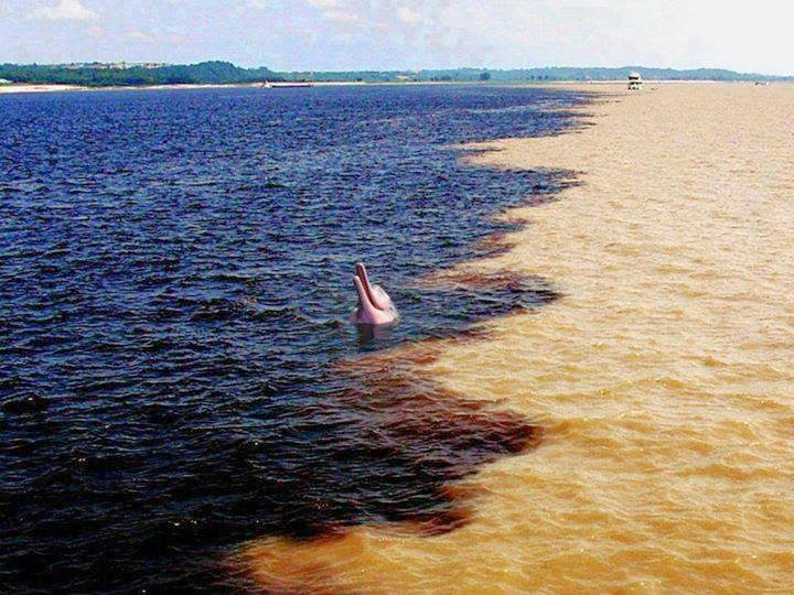 Confluence of the Amazon River and the Rio Negro in Brazil - Here Are 12 Points In The World Where Major Bodies Of Water Join Together… And They're So Awesome