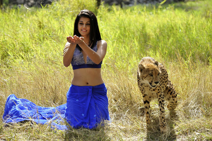 tapsee from mogudu, tapsee hot images