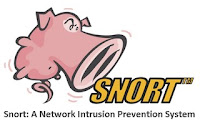 Snort: A Network Intrusion Prevention System (NIPS)