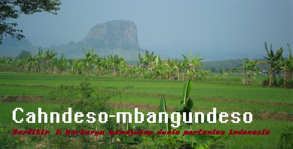 Indonesia adalah negara agraris