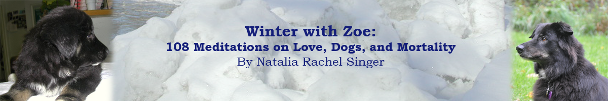 Winter With Zoe