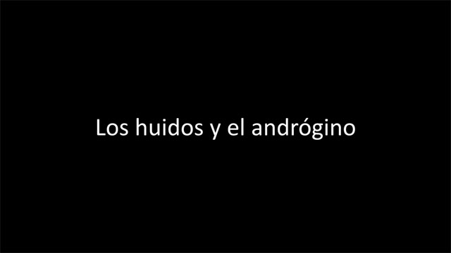 Los huidos y el andrógino (VIDEO 1)