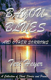 BAYOU BLUES AND OTHER SORROWS by Teri Heyer