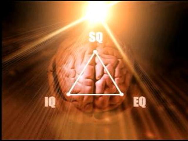 Definisi manusia Cerdas