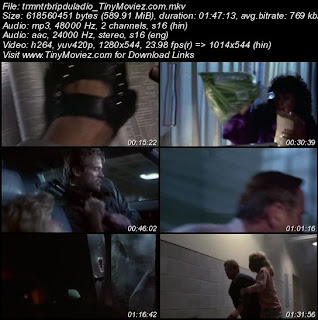 The Terminator 1984 720p BRRip Dual Audio 600MB