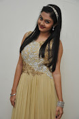 Pragathi photos at Basthi audio launch-thumbnail-15