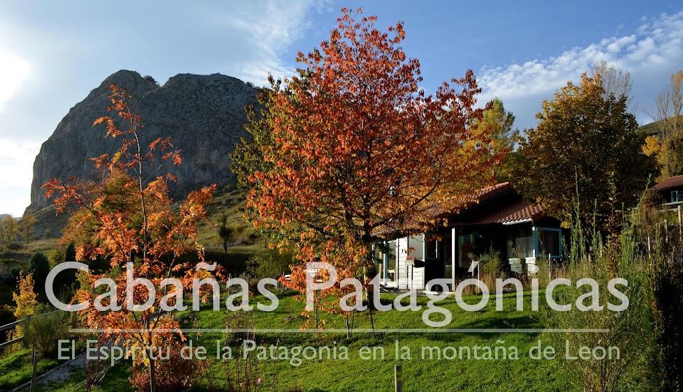 Cabañas Patagónicas