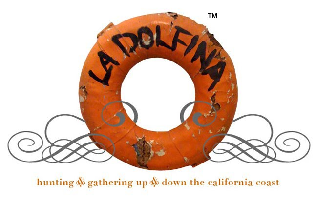 LA DOLFINA