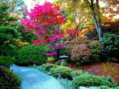 Imagens e Fotos de Jardins