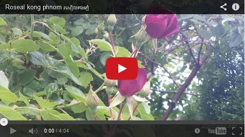 http://kimedia.blogspot.com/2014/06/roseal-kong-phnom.html