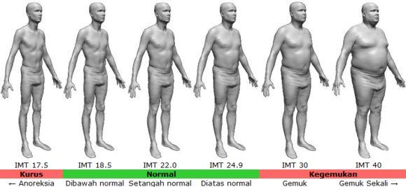 Tipikal bentuk tubuh sesuai dengan IMT