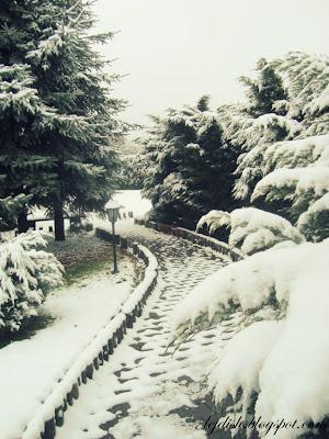 pierwszy śnieg! :)