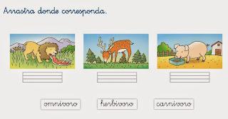 http://www.ceiploreto.es/sugerencias/cp.juan.de.la.cosa/1_2/cono/actividades/06/06/visor.html
