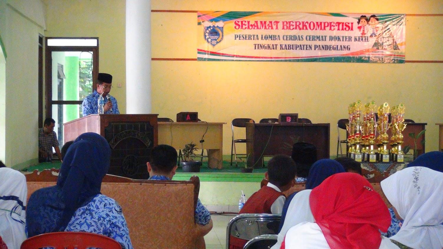Dinas Kesehatan Kabupaten Pandeglang Juni 2014