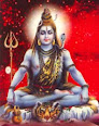 Buy Pujas and Homams Here