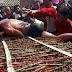 Ritual Ngeri Berguling Atas Katil Berduri (9 Foto)