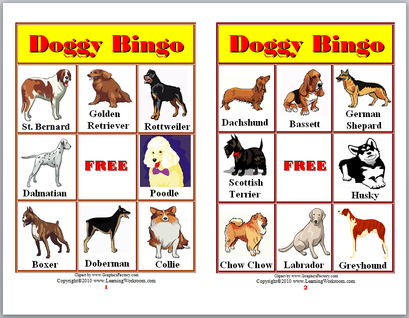 Learning Ideas Grades K 8 About Dogs