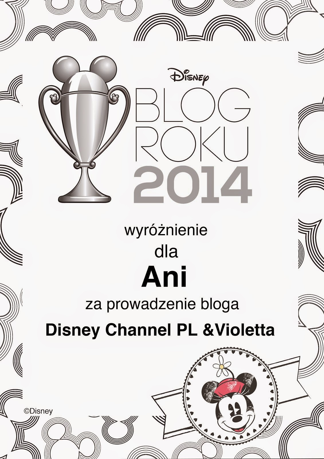 BLOG ROKU DISNEY 2014