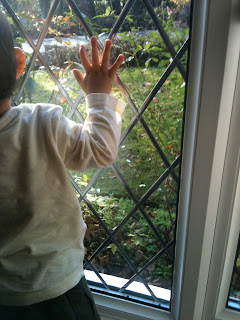 toddler looking out of the front window - sun is shining
