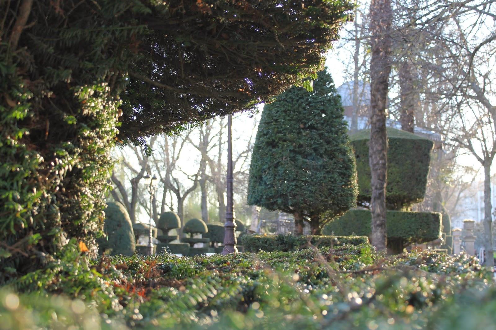 Crea tu jard n paseo por burgos for Crea tu jardin