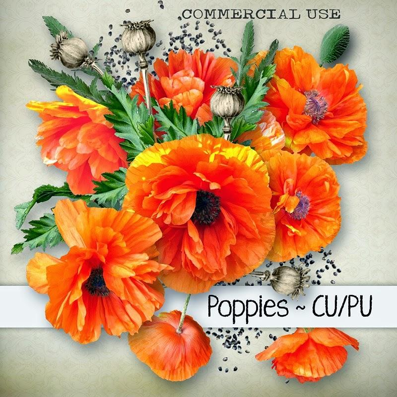 http://4.bp.blogspot.com/-gkRfZQQSiSU/U4xqlQY3qLI/AAAAAAAAIWY/NzaqMt_GkVc/s1600/chey0kota_CU+Poppies_Cover+%5Bblog+preview%5D.jpg