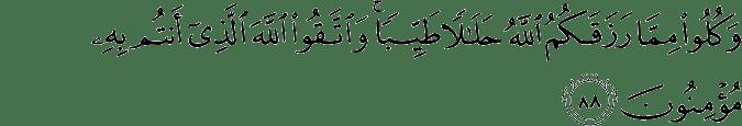 Surat Al-Maidah Ayat 88