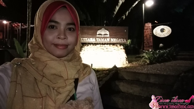 Taman Negara Night Jungle Walk