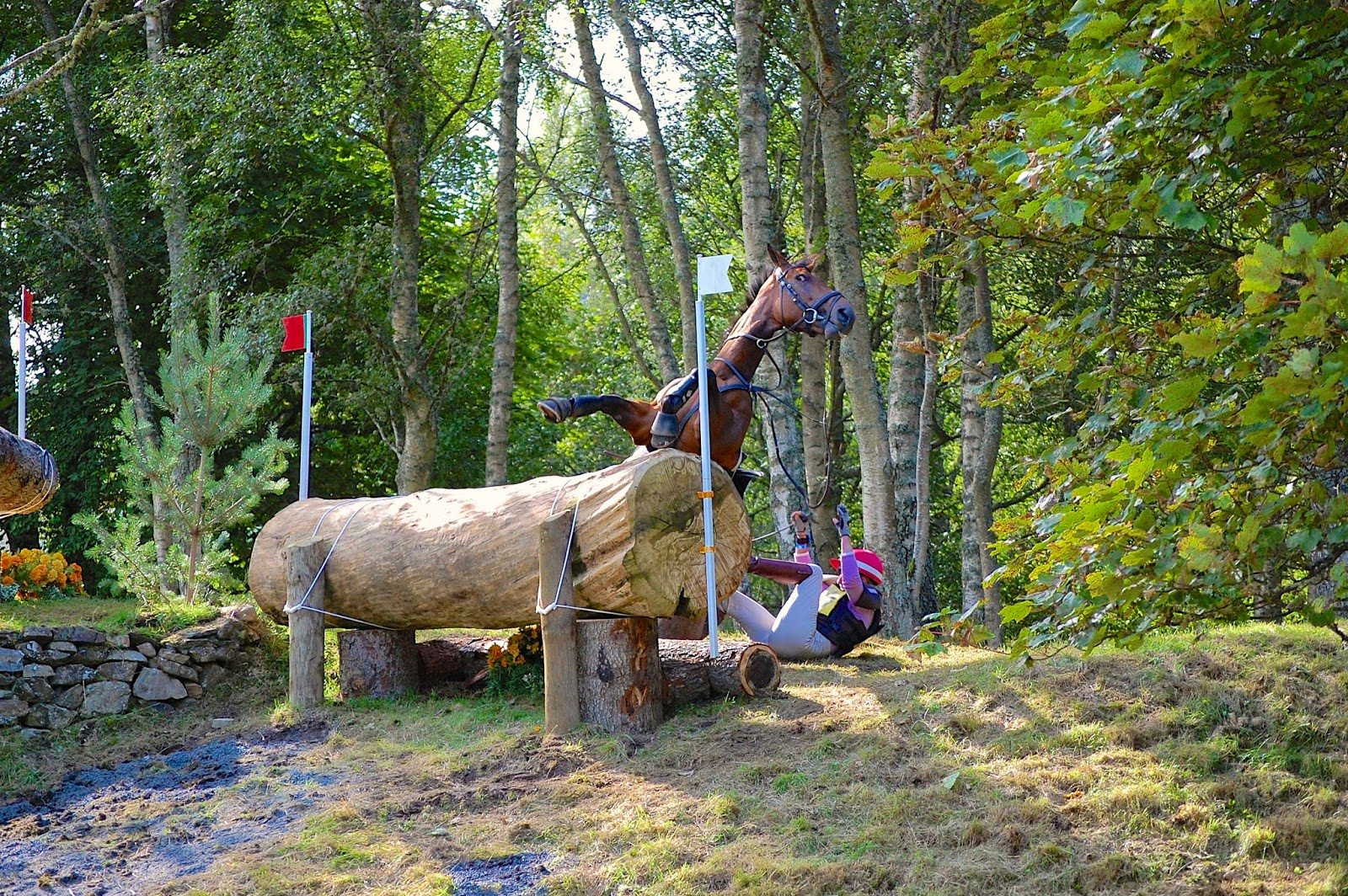 Blair Castle International Horse Trials; horse crash 7
